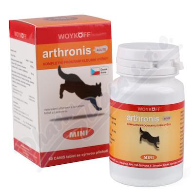 Arthronis mini ACUTE CANIS (sýrová přích. ) tbl. 60